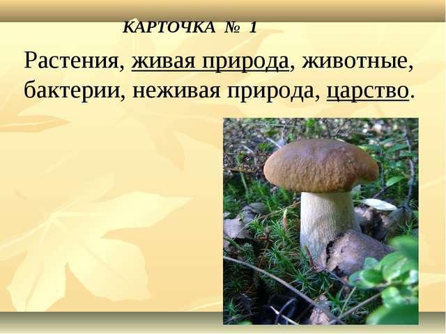 КАРТОЧКА № 1 Растения, живая природа, животные, бактерии, неживая природа, ца...