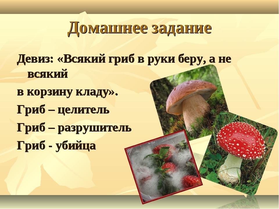 Домашнее задание Девиз: «Всякий гриб в руки беру, а не всякий в корзину кладу...