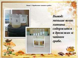 Опыт 5. Определение хитина в грибах. Вывод: меньше всего хитина содержится в