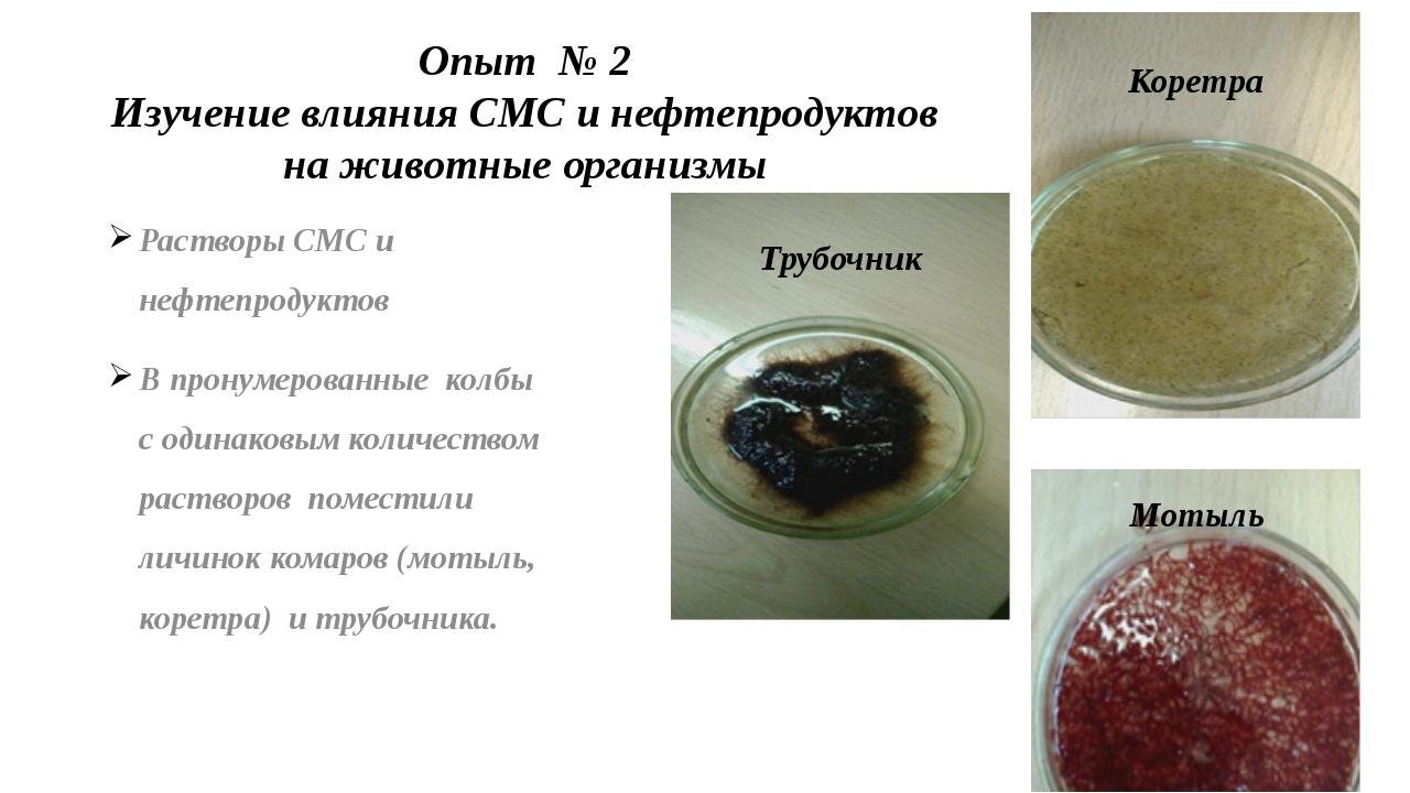 Опыт № 2 Изучение влияния СМС и нефтепродуктов на животные организмы Растворы...