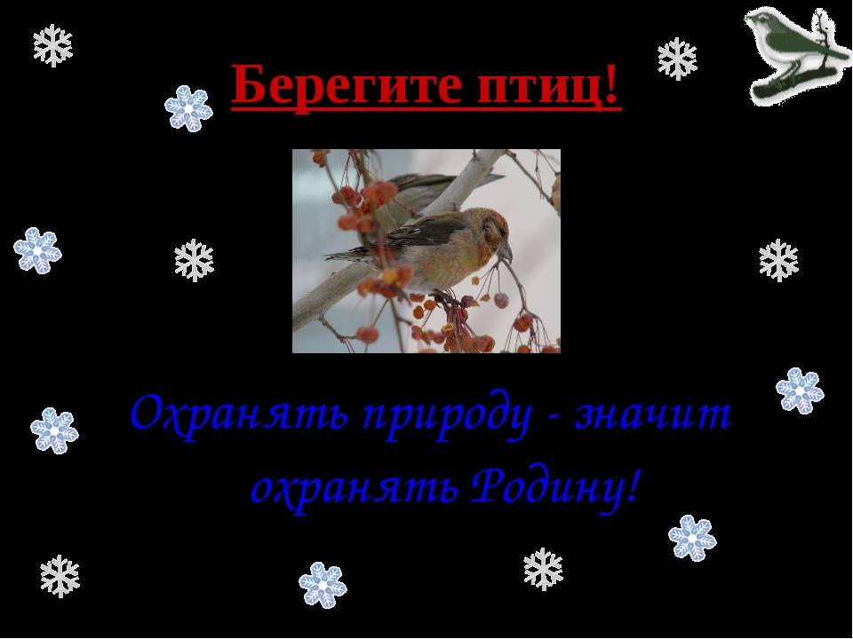 Берегите птиц! Охранять природу - значит охранять Родину!