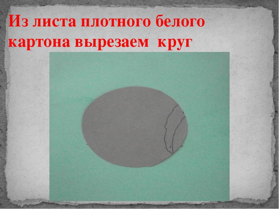 Из листа плотного белого картона вырезаем круг