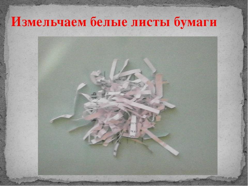 Измельчаем белые листы бумаги