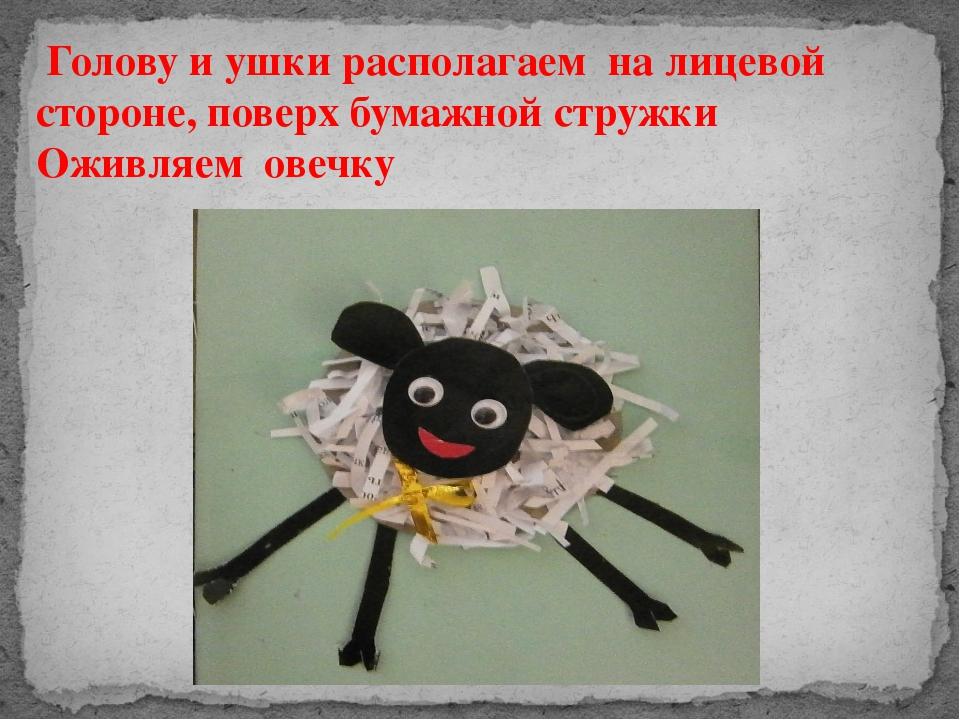 Голову и ушки располагаем на лицевой стороне, поверх бумажной стружки Оживля...