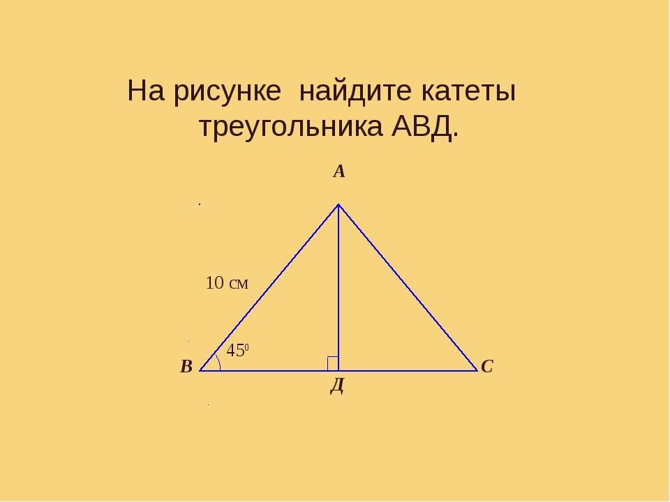 Задача 1 На рисунке найдите катеты треугольника АВД.