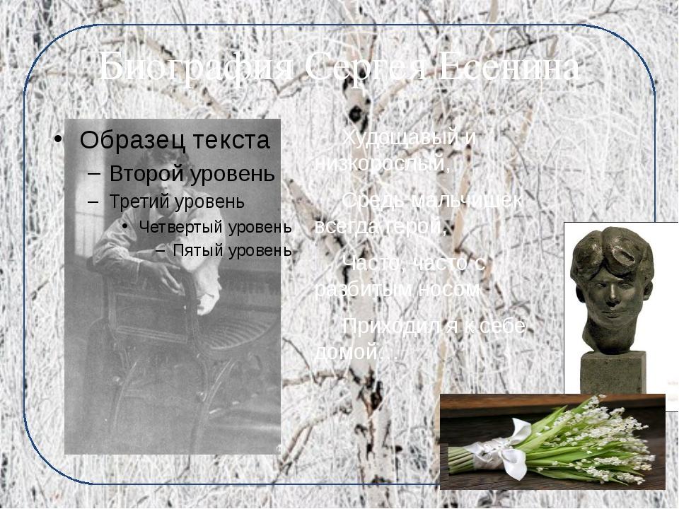 Биография Сергея Есенина Худощавый и низкорослый, Средь мальчишек всегда ге...
