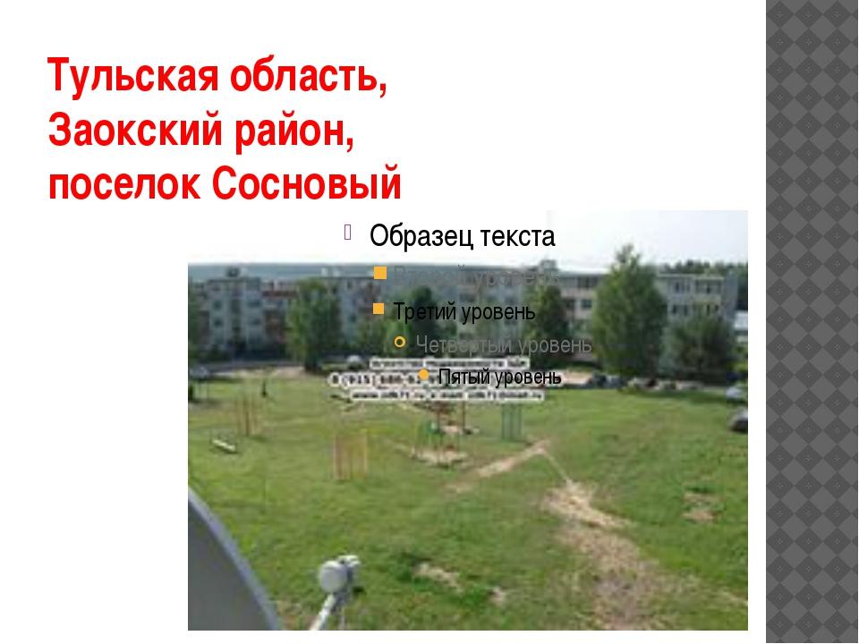 Тульская область, Заокский район, поселок Сосновый