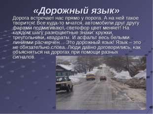 «Дорожный язык» Дорога встречает нас прямо у порога. А на ней такое творится!