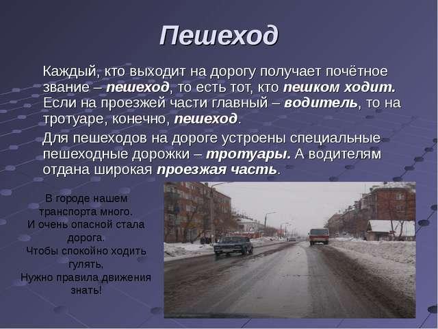 Пешеход Каждый, кто выходит на дорогу получает почётное звание – пешеход, то...