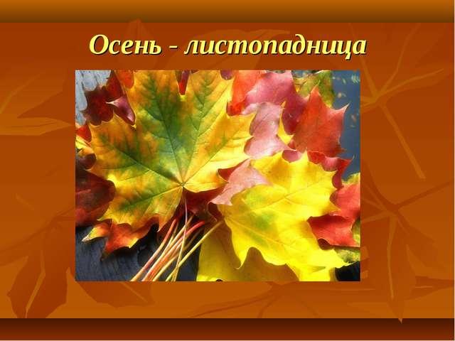 Осень - листопадница