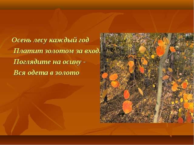 Осень лесу каждый год Платит золотом за вход. Поглядите на осину - Вся одета...