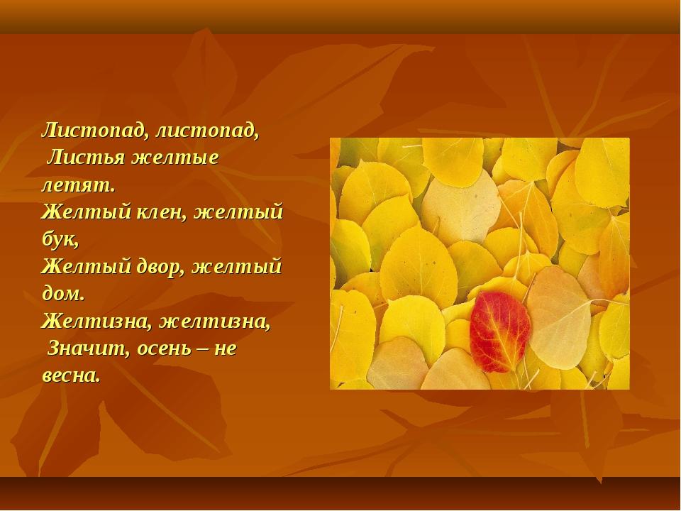 Листопад, листопад, Листья желтые летят. Желтый клен, желтый бук, Желтый двор...
