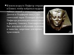 В юном возрасте Пифагор отправился вЕгипет, чтобы набраться мудрости и тайны