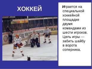 Играется на специальной хоккейной площадке двумя командами из шести игроков.