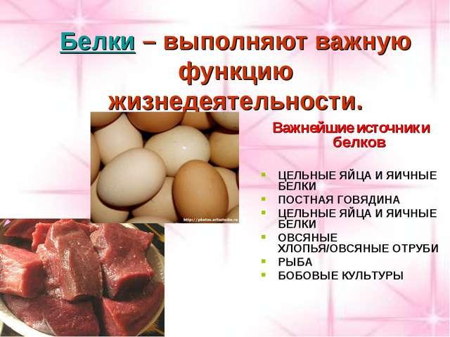 Белки – выполняют важную функцию жизнедеятельности. Важнейшие источники белко...