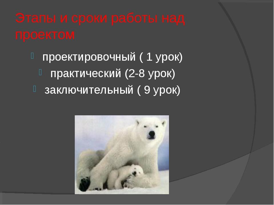 Этапы и сроки работы над проектом проектировочный ( 1 урок) практический (2-8...