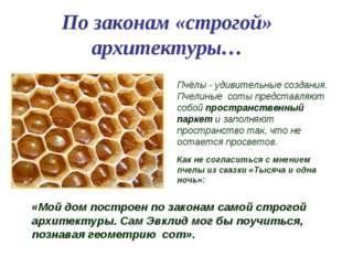 По законам «строгой» архитектуры… Пчёлы - удивительные создания. Пчелиные со