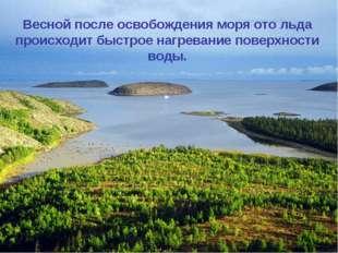 Распределение температуры воды на поверхности и в толще моря характеризуется
