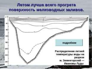 Летом лучше всего прогрета поверхность мелководных заливов. Распределение лет