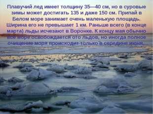 Каждую зиму Белое море покрывается льдом, который совершенно исчезает весной,