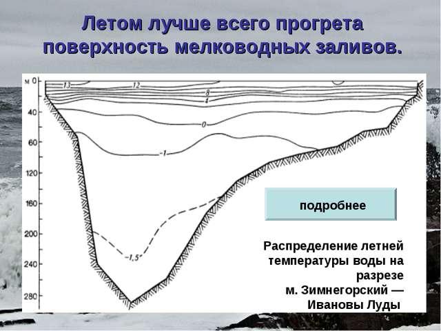 Летом лучше всего прогрета поверхность мелководных заливов. Распределение лет...