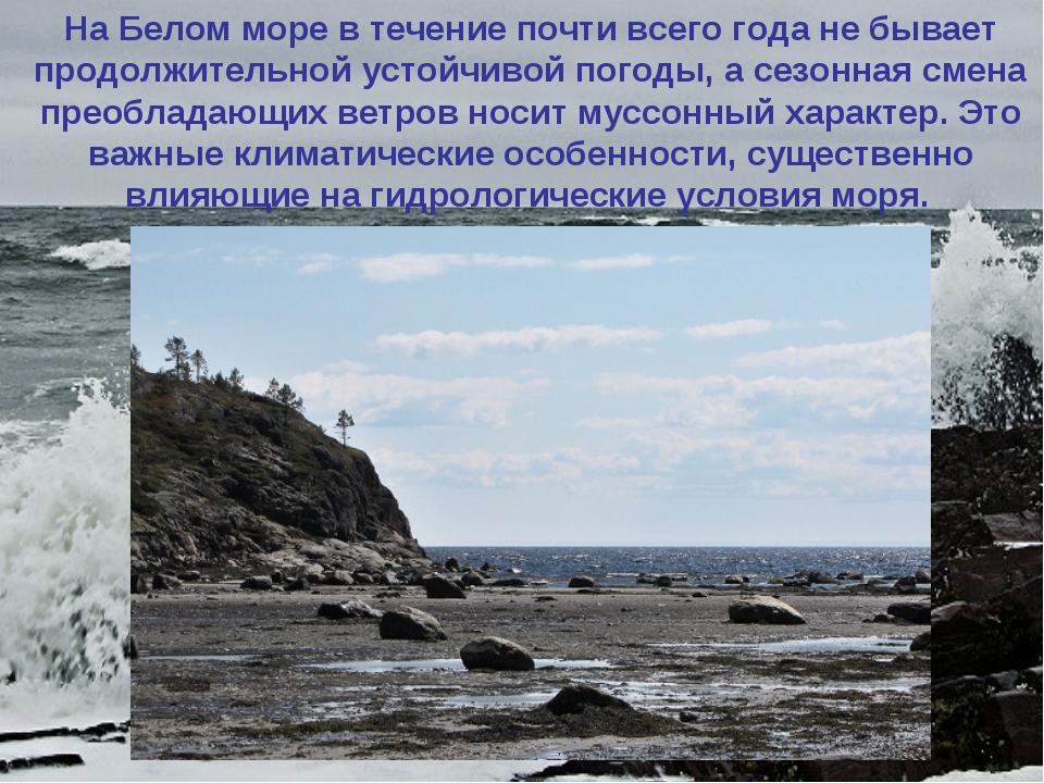 На Белом море в течение почти всего года не бывает продолжительной устойчивой...