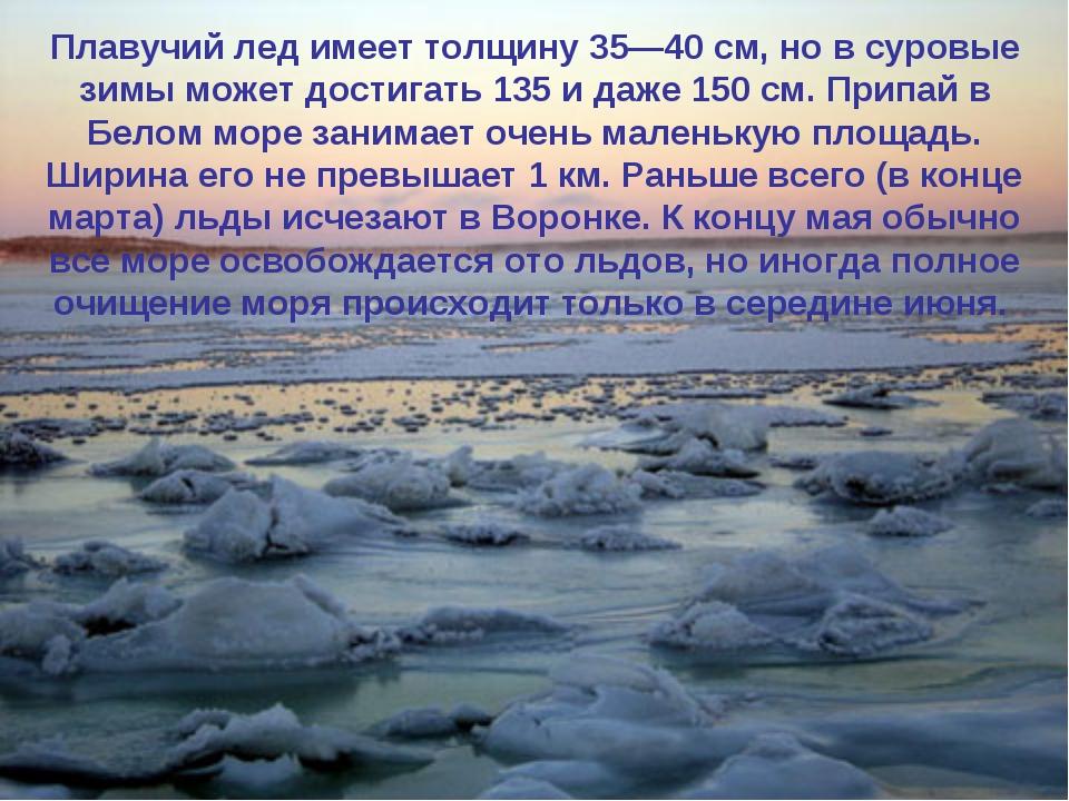 Каждую зиму Белое море покрывается льдом, который совершенно исчезает весной,...