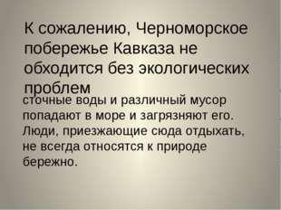 К сожалению, Черноморское побережье Кавказа не обходится без экологических пр