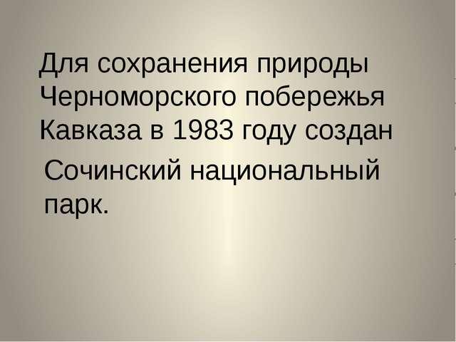 Для сохранения природы Черноморского побережья Кавказа в 1983 году создан Соч...