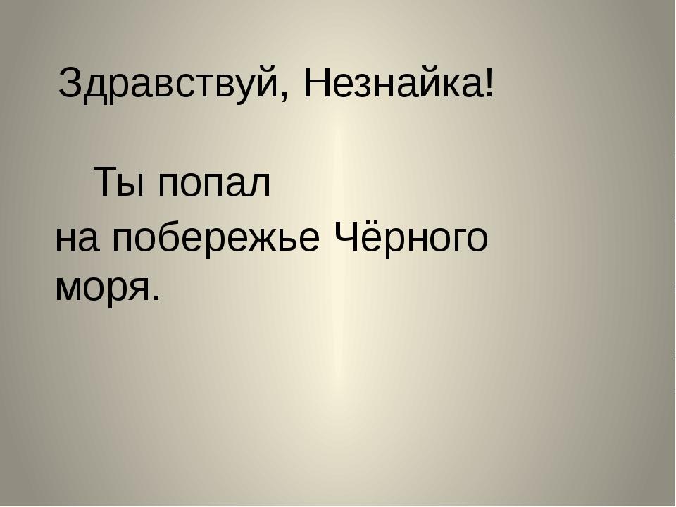 Здравствуй, Незнайка! Ты попал на побережье Чёрного моря.