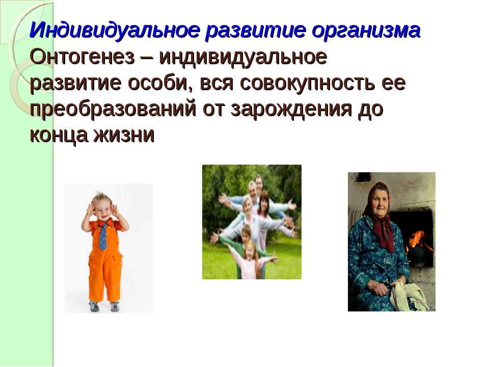 Индивидуальное развитие организма Онтогенез – индивидуальное развитие особи,...