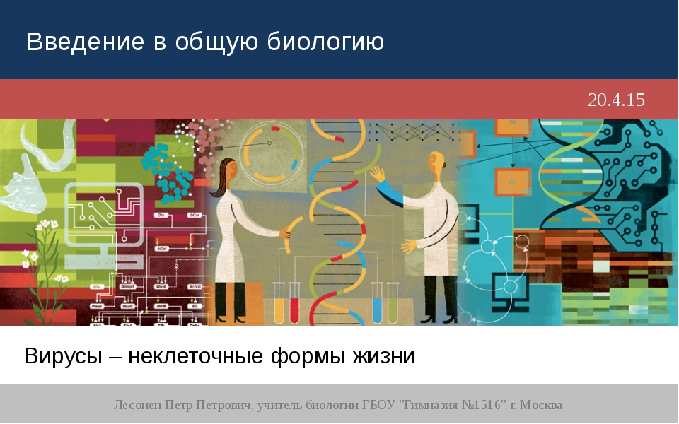 Вирусы – неклеточные формы жизни Лесонен Петр Петрович, учитель биологии ГБОУ...