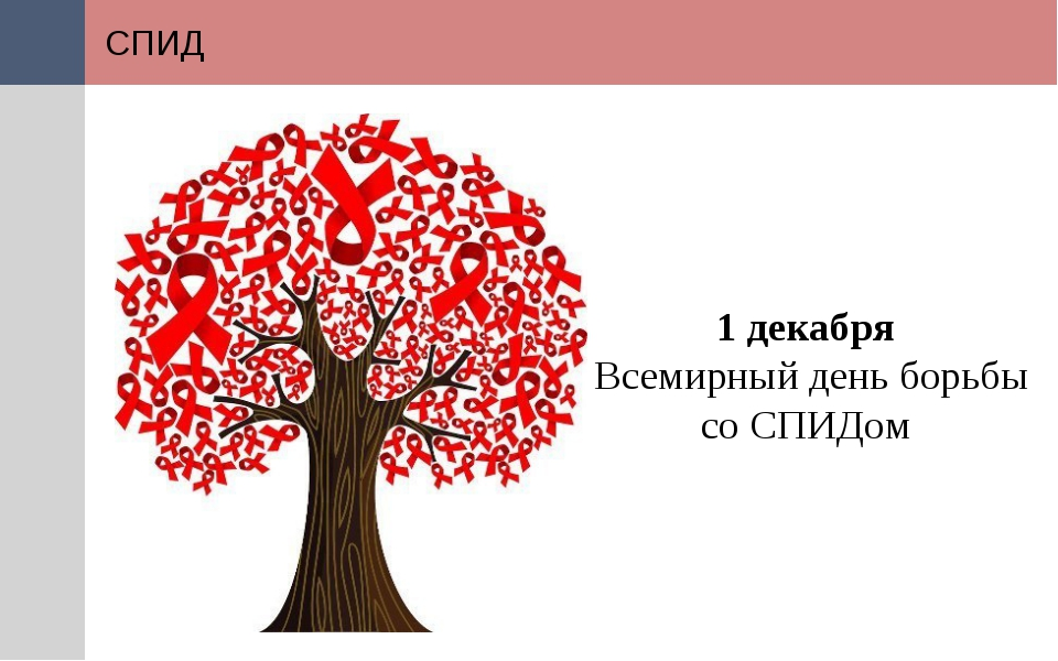 СПИД 1 декабря Всемирный день борьбы со СПИДом СПИД является единственным ви...