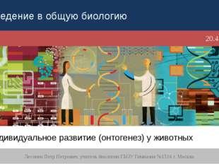 Индивидуальное развитие (онтогенез) у животных Лесонен Петр Петрович, учитель