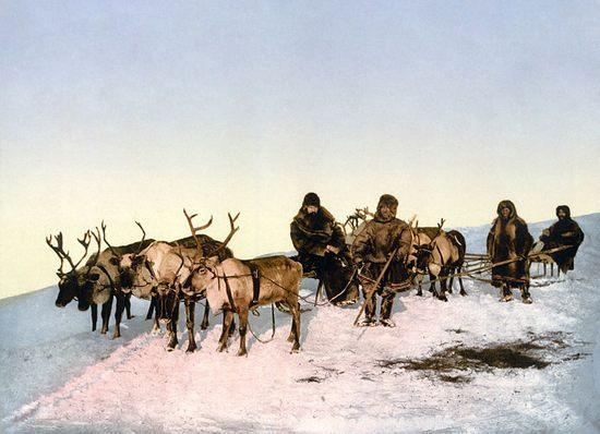 reindeer-and-people04
