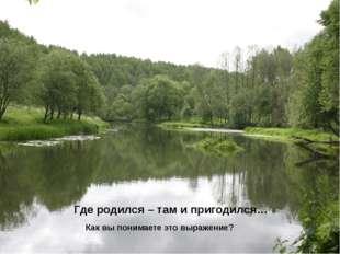 Где родился – там и пригодился… Как вы понимаете это выражение?
