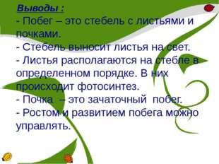 Выводы : - Побег – это стебель с листьями и почками. - Стебель выносит листь