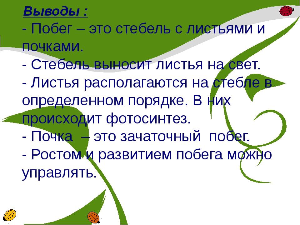 Выводы : - Побег – это стебель с листьями и почками. - Стебель выносит листь...