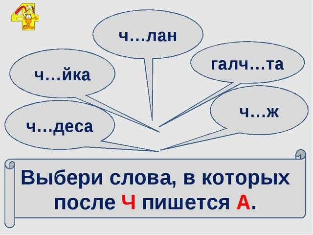Выбери слова, в которых после Ч пишется А. ч…деса ч…йка ч…лан галч…та ч…ж