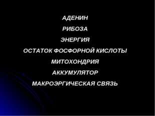 АДЕНИН РИБОЗА ЭНЕРГИЯ ОСТАТОК ФОСФОРНОЙ КИСЛОТЫ МИТОХОНДРИЯ АККУМУЛЯТОР МАКРО