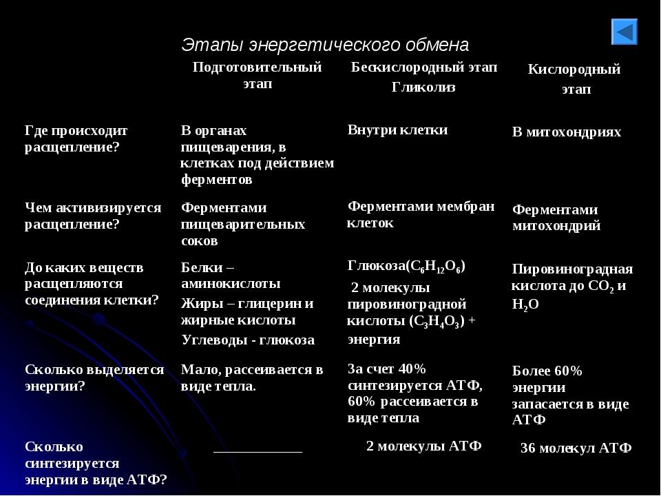 Этапы энергетического обмена Бескислородный этап Гликолиз Внутри клетки Ферме...