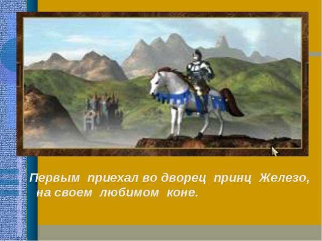 Первым приехал во дворец принц Железо, на своем любимом коне.