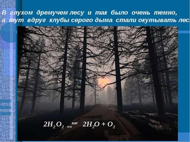 В глухом дремучем лесу и так было очень темно, а тут вдруг клубы серого дыма...
