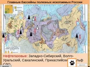 выход Задание Установите взаимосвязь между тектоническими структурами, релье
