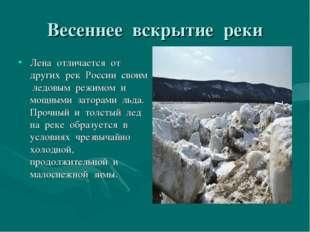 Весеннее вскрытие реки Лена отличается от других рек России своим ледовым реж