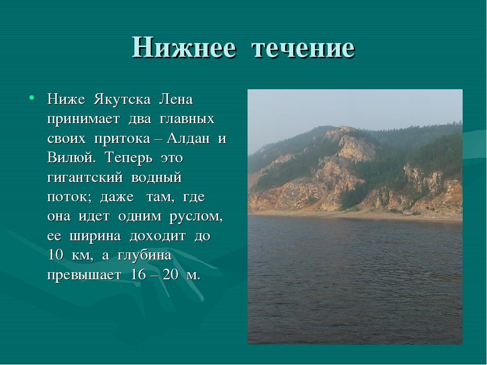 Нижнее течение Ниже Якутска Лена принимает два главных своих притока – Алдан...