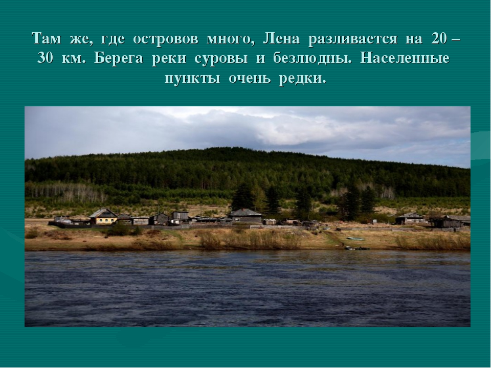 Там же, где островов много, Лена разливается на 20 – 30 км. Берега реки суров...