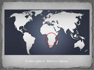 Родина арбуза - Южная Африка.
