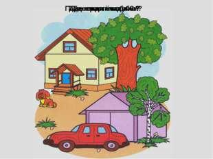 Где растёт дуб? Где стоит машина? Где сидит собака? Где лежат косточки?