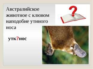 Австралийское животное с клювом наподобие утиного носа утк?нос